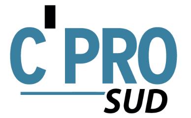 logo C'PRO sud
